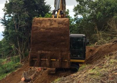 New Recent King Excavation Photos-5